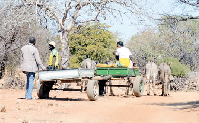 import-restrictions-fuel-rampant-smuggling-in-beitbridge